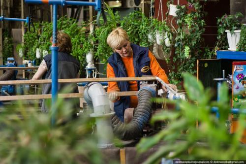 Самое зелёное место. Бригада обмотчиц украсила свои рабочие места разнообразными растениями